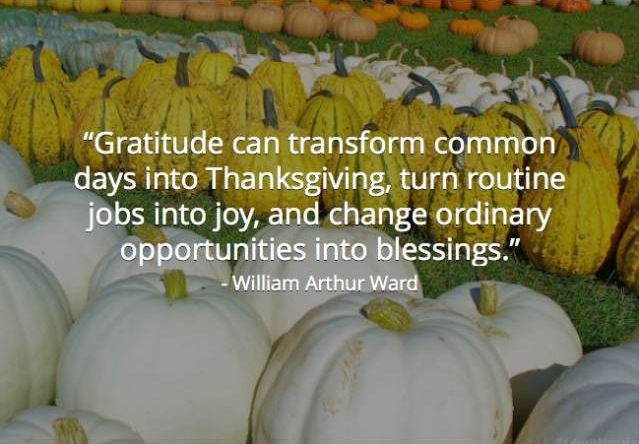Gratitude can transform the most common days into thanksgiving