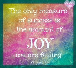 The only measure of success is the amount of joy we are feeling