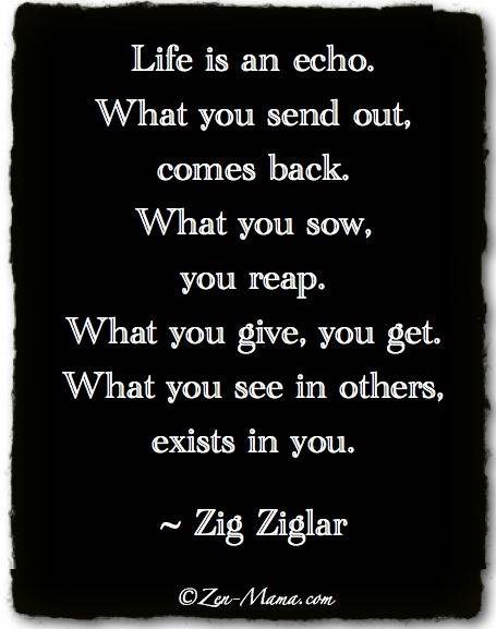 Life is an echo. What you send out comes back. What you sow, you reap. What you give, you get. What you see in others exists in you.