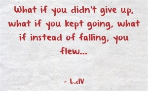 What if you didn't give up. What if you kept going. What if instead of falling, you flew...