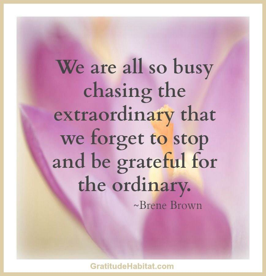 We are all so busy chasing the extraordinary that we forget to stop and be grateful for the ordinary