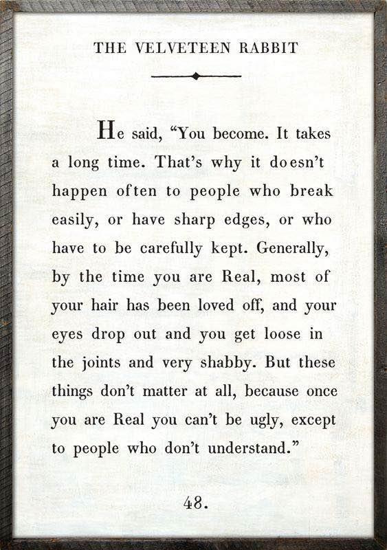excerpt from the Velveteen Rabbit