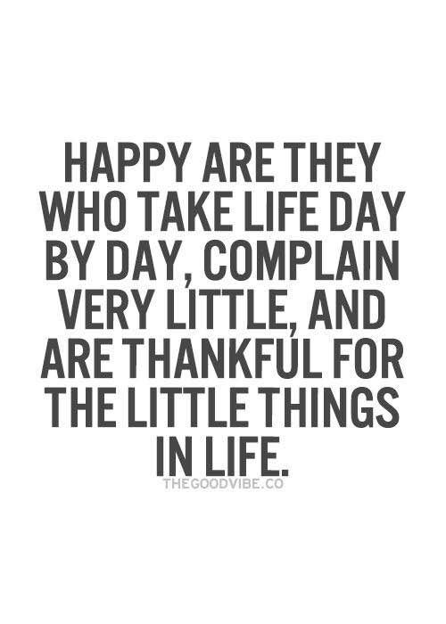Happy are thy who take life day by day , complain very little and are thankful for the little things in life