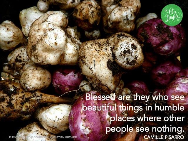 blessed are they who see beautiful things in humble places where other people see nothing